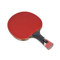 - Table ping pong intersport ...