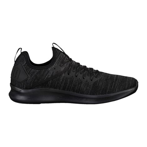 PUMA IGNITE FLASH EVOKNIT 2